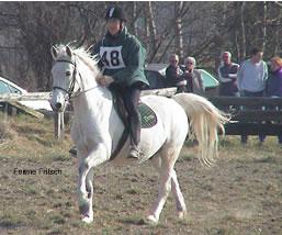 centre equestre kogenheim